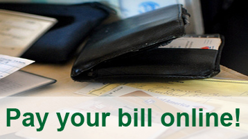 Secure Online Bill Payment